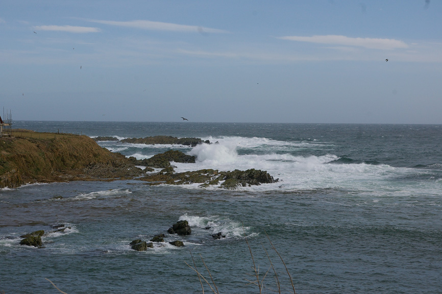 Waves crash into the rocky shore north of Wick